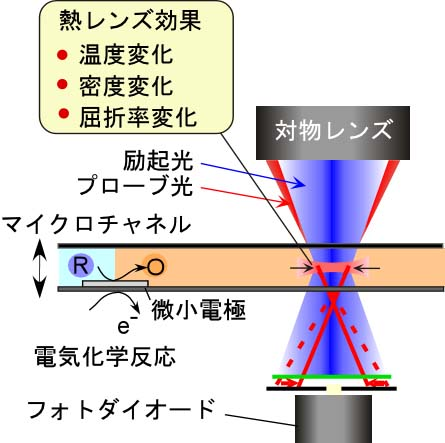 電気化学 電極